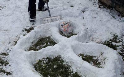 Pop-Art aus Schnee